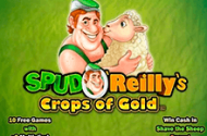 Spud O Reillys Crops Of Gold